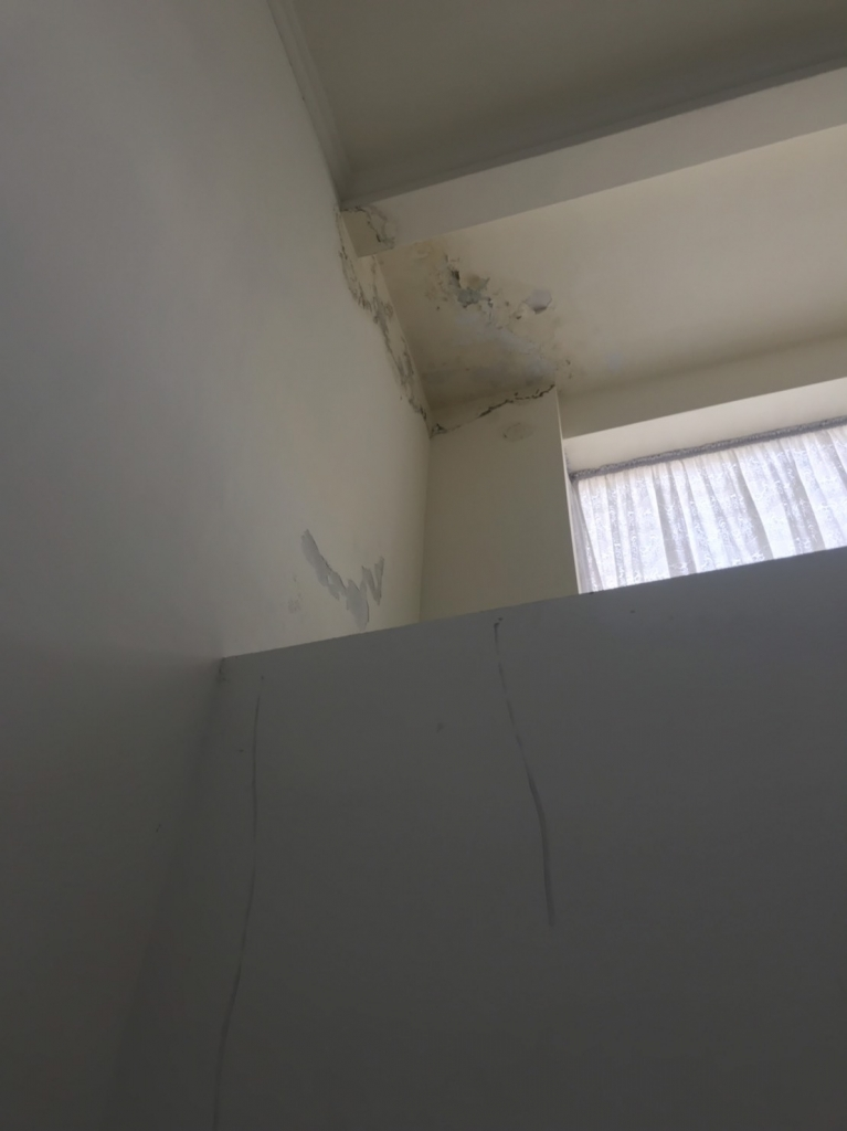 仁武區仁忠四街-熱水管漏水