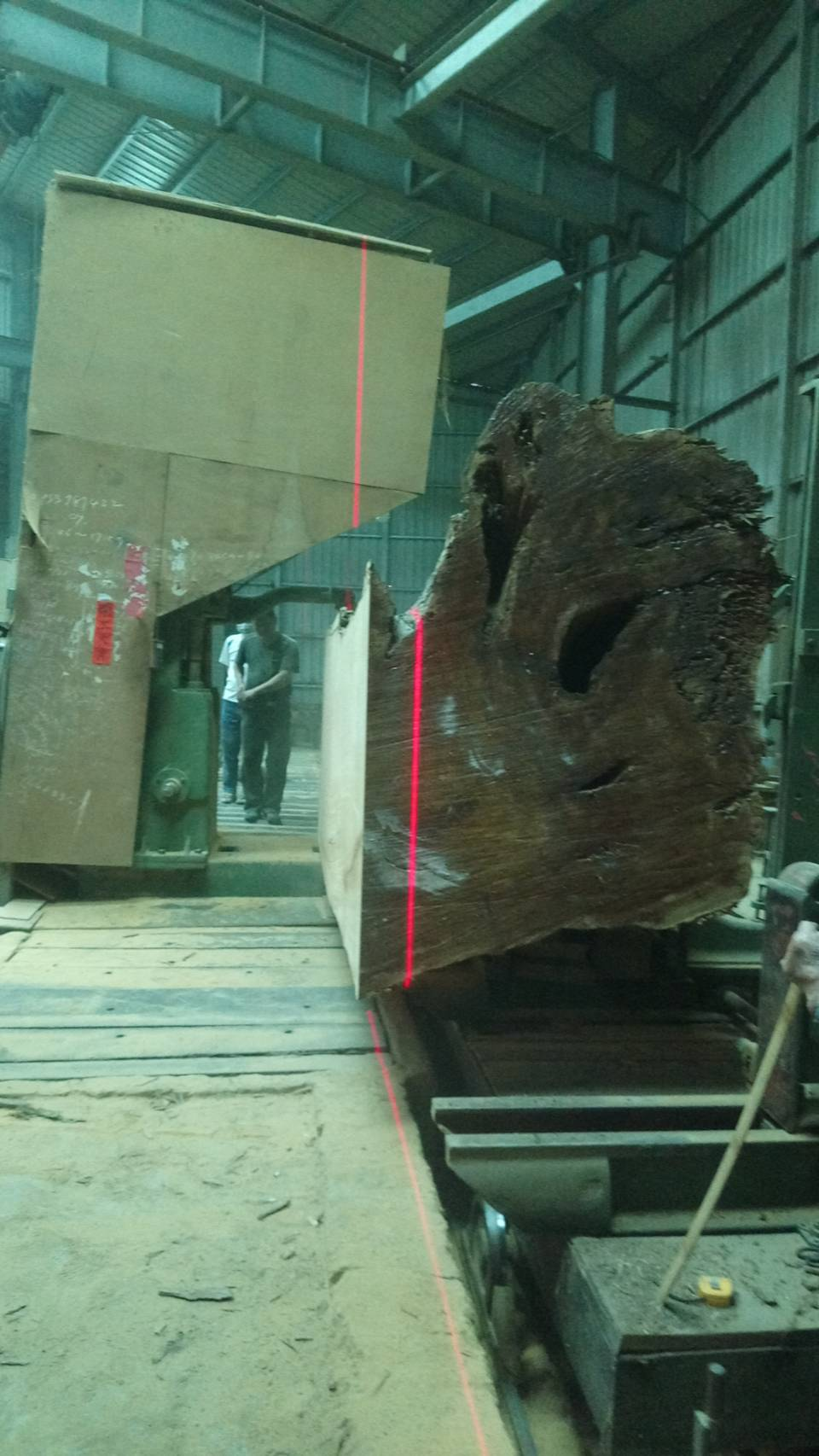 原木切割大木頭切割照片