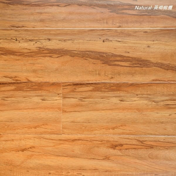 LADRO-黃褐橄欖