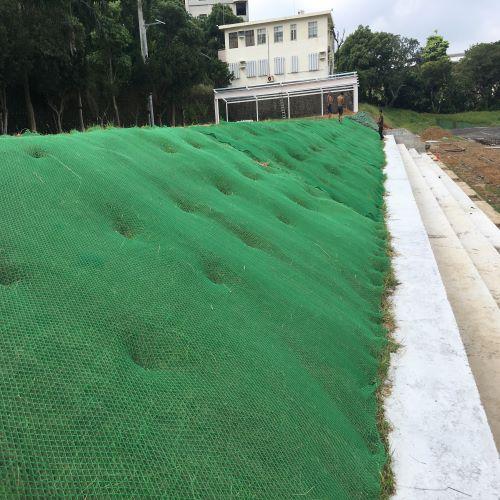 抗沖蝕植生網毯B