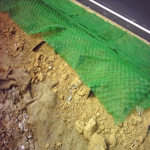 抗沖蝕植生網毯A