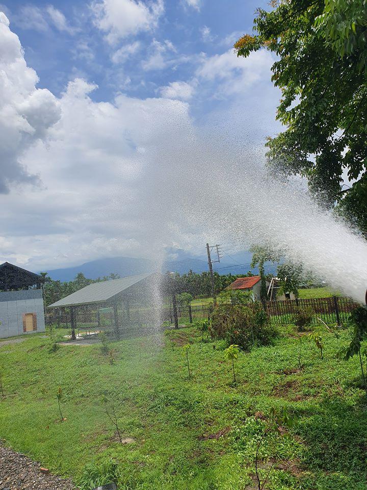 灑水車-天氣炎熱 樹