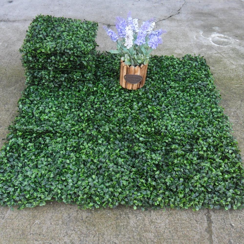 七里香草皮-1個
