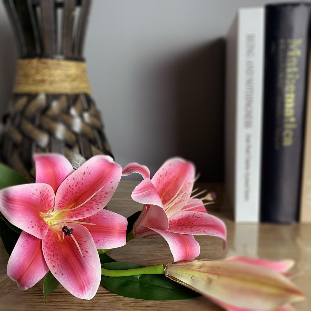 百合花-1枝