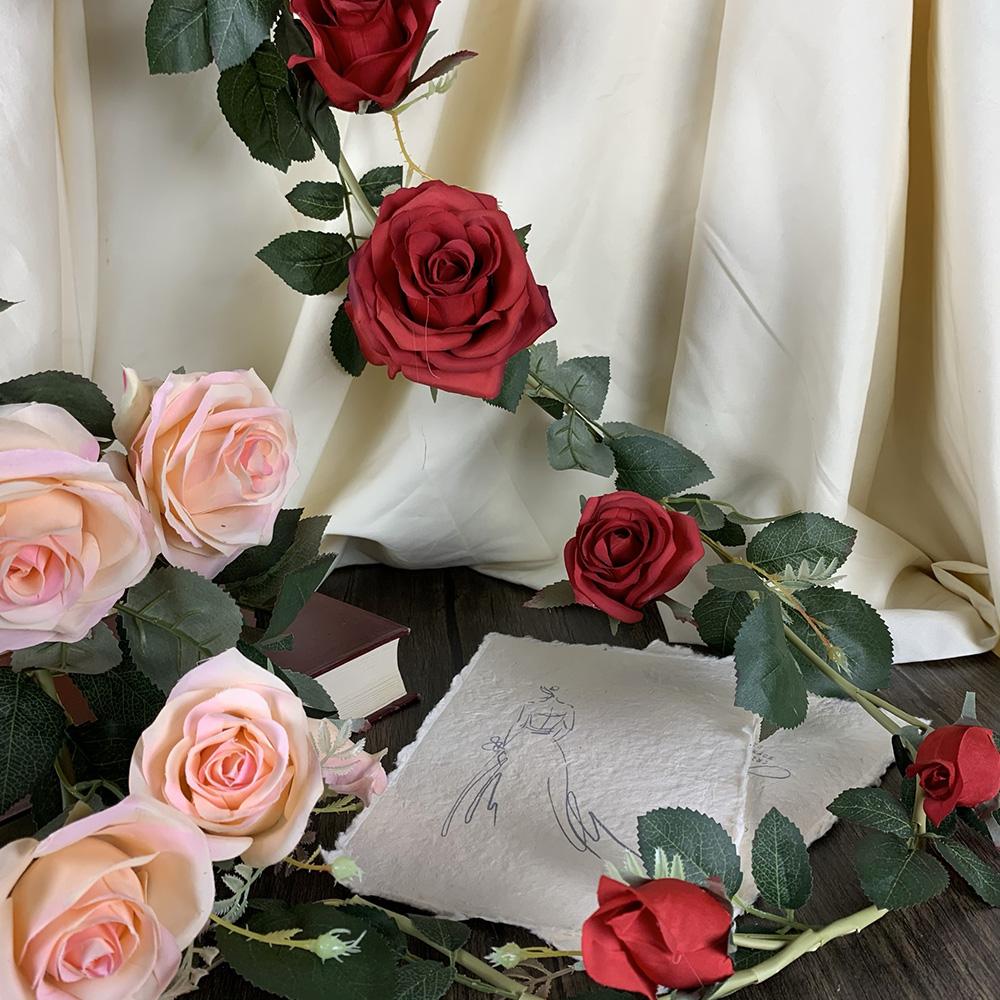 澳洲玫瑰爬藤