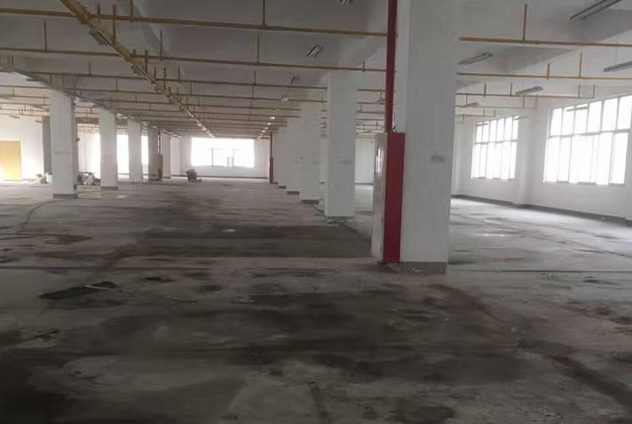 廠房地坪固化工程