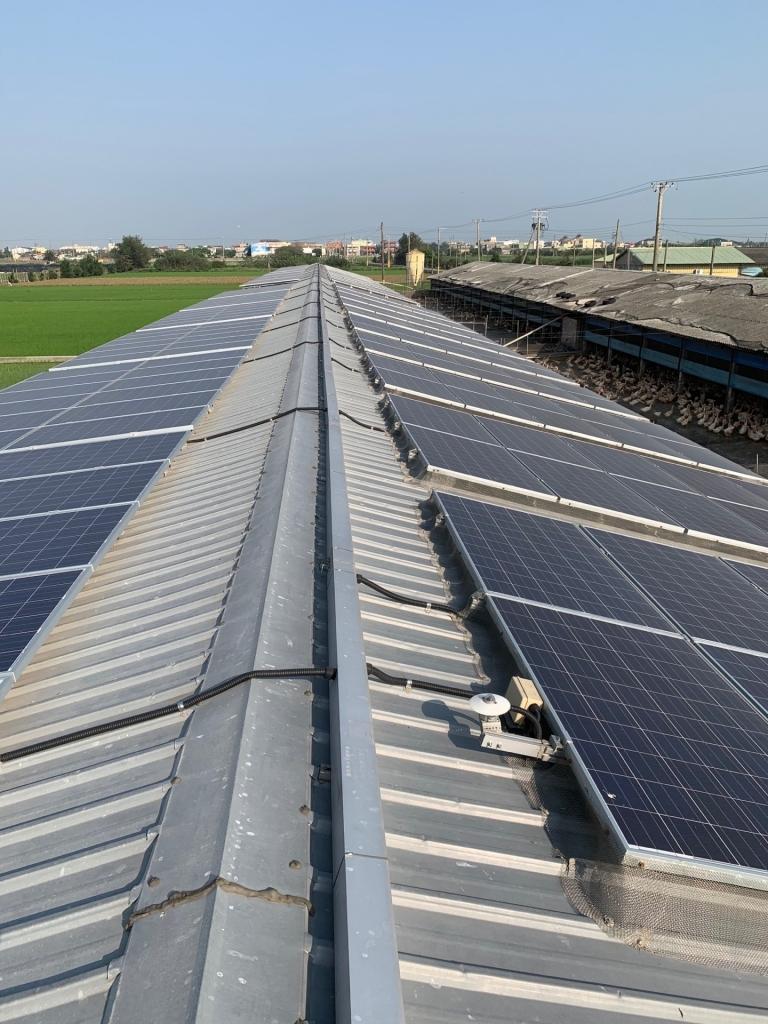 太陽能安裝-彰化雞舍