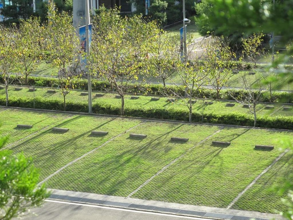 場鑄植草地坪施工