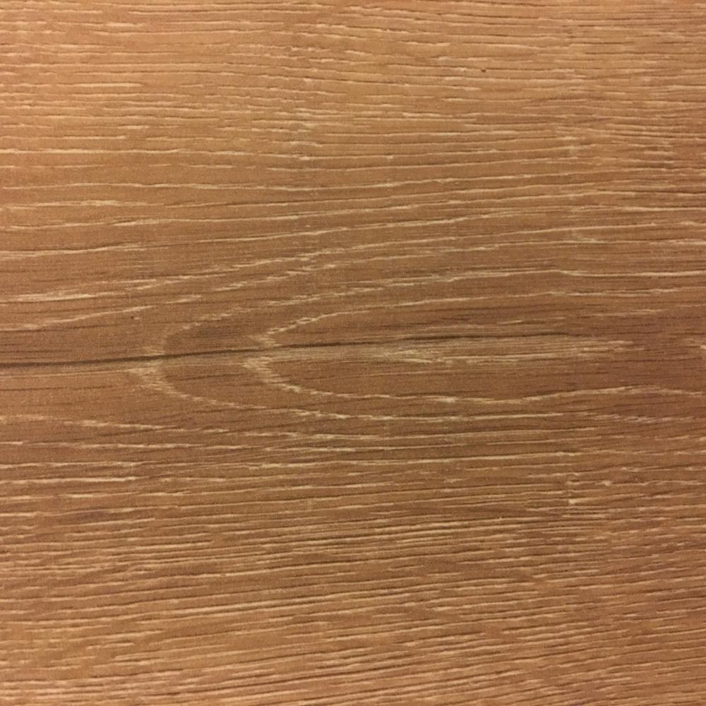 精選-957A斑比橡