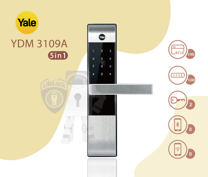 Yale-YDM-3