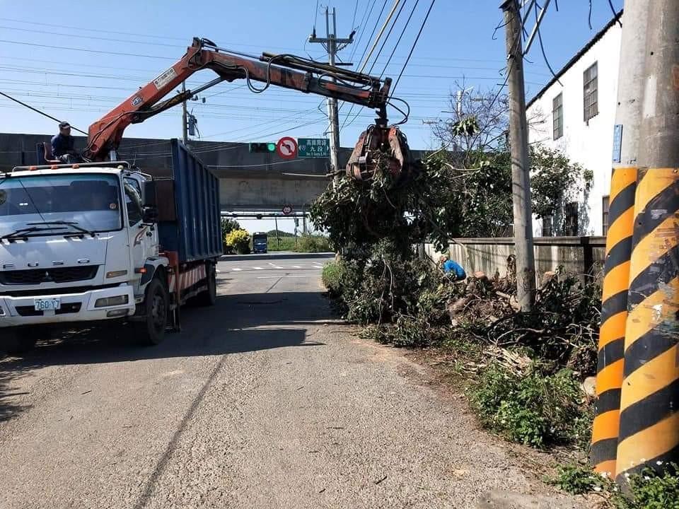 廢樹木清運