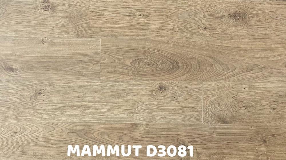 MAMMUT系列 D