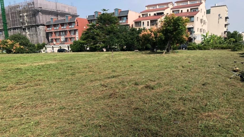 中庭綠地養護工程-綠地除草