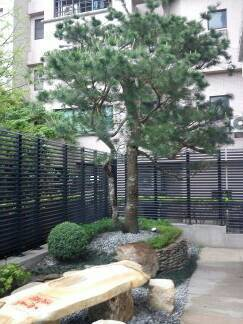 庭園.景觀用樹.設計.買賣