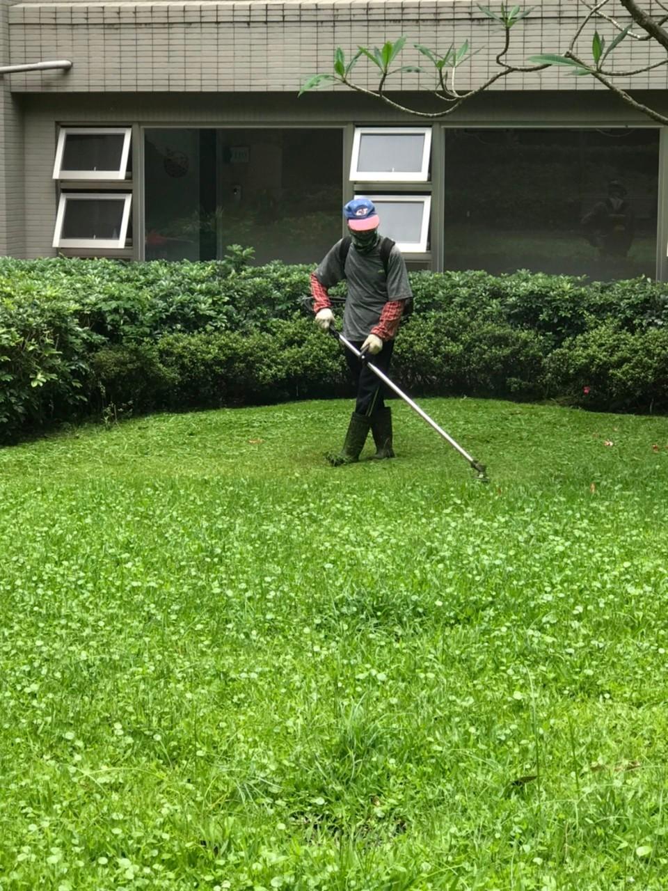 專業草皮維護、病蟲害防治